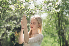 Χαριτωμένη ξανθή γυναίκα μεταξύ των κλάδων δέντρων της Apple ενάντια στις λευκές κίτρινες νεολαίες άνοιξη λουλουδιών έννοιας ανασ Στοκ φωτογραφία με δικαίωμα ελεύθερης χρήσης