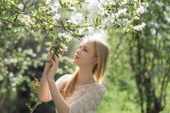 Χαριτωμένη ξανθή γυναίκα μεταξύ των κλάδων δέντρων της Apple ενάντια στις λευκές κίτρινες νεολαίες άνοιξη λουλουδιών έννοιας ανασ Στοκ Εικόνες