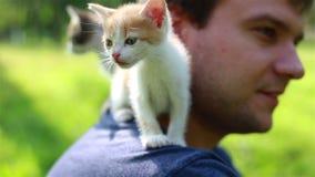 Χαριτωμένη συνεδρίαση γατακιών στον ώμο νεαρών άνδρων απόθεμα βίντεο