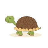 Χαριτωμένη χελώνα κινούμενων σχεδίων που απομονώνεται στο άσπρο υπόβαθρο Στοκ Εικόνες