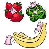 Χαριτωμένοι διανυσματικοί αστείοι καθορισμένοι χοίροι χρώματος με τα φρούτα ελεύθερη απεικόνιση δικαιώματος