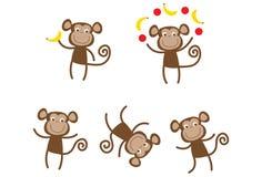 Χαριτωμένοι δραστήριοι πίθηκοι Στοκ Εικόνες
