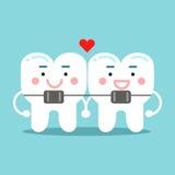 Χαριτωμένοι χαμογελώντας χαρακτήρες δοντιών κινούμενων σχεδίων με το orthodontic υποστήριγμα, οδοντική διανυσματική απεικόνιση γι Στοκ Εικόνα