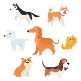 Χαριτωμένοι χαρακτήρες σκυλιών των διάφορων φυλών, μεγάλος και μικρός Στοκ φωτογραφία με δικαίωμα ελεύθερης χρήσης