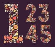 Χαριτωμένοι floral εκλεκτής ποιότητας αριθμοί καθορισμένοι Στοκ Φωτογραφία