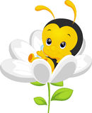 Χαριτωμένος λίγα κινούμενα σχέδια μελισσών ελεύθερη απεικόνιση δικαιώματος