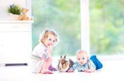 Χαριτωμένος λίγο μωρό και η αδελφή μικρών παιδιών του με το πραγματικό λαγουδάκι Στοκ Φωτογραφία