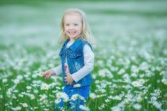 Χαριτωμένος λίγο χαμογελώντας κοριτσάκι στο chamomile τομέα λίγο ξανθό παιδί με το στεφάνι στο κεφάλι στα chamomiles που φορούν τ Στοκ Εικόνες