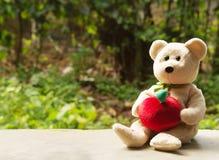 Χαριτωμένος αντέξτε την κούκλα Στοκ φωτογραφία με δικαίωμα ελεύθερης χρήσης