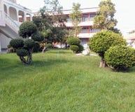 χαριτωμένος κήπος στοκ φωτογραφίες