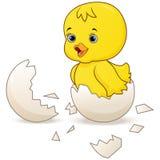 Χαριτωμένος λίγος νεοσσός κινούμενων σχεδίων που εκκολάπτεται από ένα αυγό που απομονώνεται σε ένα άσπρο υπόβαθρο ελεύθερη απεικόνιση δικαιώματος
