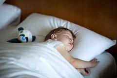 Χαριτωμένος λίγο αγόρι ύπνου στοκ φωτογραφία με δικαίωμα ελεύθερης χρήσης