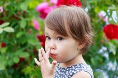 Χαριτωμένος λίγο κορίτσι μικρών παιδιών που επιλέγει τη μύτη της στοκ εικόνα με δικαίωμα ελεύθερης χρήσης