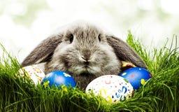 Χαριτωμένος λίγο κουνέλι με τα αυγά Πάσχας στις χλόες Σύμβολο Πάσχας λαγουδάκι-Πάσχα στον πολιτισμό της κάποιας δυτικής Ευρώπης,  στοκ εικόνες με δικαίωμα ελεύθερης χρήσης