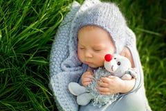 Χαριτωμένος λίγο νεογέννητο αγοράκι, ύπνος, εκμετάλλευση χαριτωμένη λίγο mous Στοκ Φωτογραφία