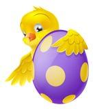Χαριτωμένος νεοσσός και χρωματισμένο αυγό Πάσχας σοκολάτας Στοκ Εικόνες