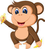 Χαριτωμένος πίθηκος κινούμενων σχεδίων ελεύθερη απεικόνιση δικαιώματος