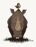 χαριτωμένος ρινόκερος Στοκ Εικόνες