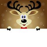 Χαριτωμένος τάρανδος Χριστουγέννων Στοκ Εικόνες