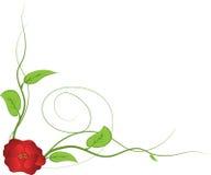 χαριτωμένος floral καρτών ανασ&kapp επίσης corel σύρετε το διάνυσμα απεικόνισης Στοκ φωτογραφίες με δικαίωμα ελεύθερης χρήσης