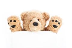 Χαριτωμένος teddy αντέχει τον κρατώντας κενό πίνακα Στοκ Φωτογραφία