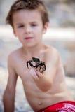 Χαριτωμένο αγόρι, που παίζει με λίγο καβούρι στην παραλία Στοκ φωτογραφίες με δικαίωμα ελεύθερης χρήσης