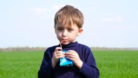 Χαριτωμένο αγόρι που στέκεται σε ένα πράσινο λιβάδι και που πίνει από ένα κιβώτιο τετρα Pak εγγράφου Υγιή, φιλικά προς το περιβάλ απόθεμα βίντεο