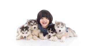 Χαριτωμένο ασιατικό αγόρι που εναπόκειται στα σιβηρικά γεροδεμένα κουτάβια Στοκ φωτογραφία με δικαίωμα ελεύθερης χρήσης
