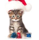Χαριτωμένο γατάκι Στοκ εικόνες με δικαίωμα ελεύθερης χρήσης