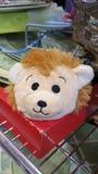 Χαριτωμένο γεμισμένο ζωικό πρόσωπο στην επίδειξη σε ένα thrift κατάστημα στοκ φωτογραφίες