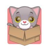 Χαριτωμένο γκρίζο γατάκι στο κουτί από χαρτόνι Στοκ Εικόνες