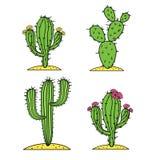 Χαριτωμένο διάνυσμα κάκτων ερήμων που τίθεται με τα λουλούδια Διανυσματική απεικόνιση