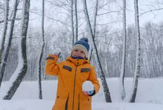 Χαριτωμένο ευρωπαϊκό αγόρι σε ένα χιονώδες δάσος στοκ φωτογραφία με δικαίωμα ελεύθερης χρήσης