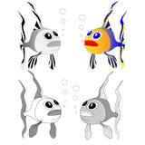 Χαριτωμένο διάνυσμα κινούμενων σχεδίων ψαριών Στοκ φωτογραφίες με δικαίωμα ελεύθερης χρήσης