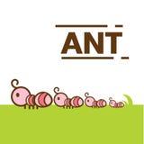 Χαριτωμένο διάνυσμα μυρμηγκιών Στοκ εικόνες με δικαίωμα ελεύθερης χρήσης