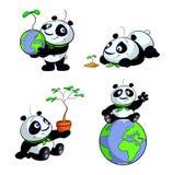 Χαριτωμένο διανυσματικό σύνολο γήινου πράσινο eco panda Στοκ Εικόνα