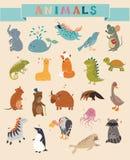 Χαριτωμένο διανυσματικό σύνολο ζώων απεικόνιση αποθεμάτων