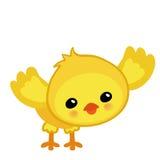 Χαριτωμένο κίτρινο ευτυχές κοτόπουλο Πάσχας Στοκ Εικόνες
