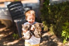 Χαριτωμένο καλό αγόρι με το γατάκι σε ένα πάρκο στοκ εικόνες