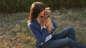 Χαριτωμένο κορίτσι και λατρευτή συνεδρίαση τεριέ του Γιορκσάιρ σκυλιών υπαίθρια στο ηλιοβασίλεμα στο πάρκο φθινοπώρου απόθεμα βίντεο