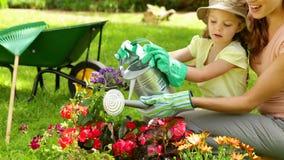 Χαριτωμένο κορίτσι που ποτίζει τα λουλούδια με τη μητέρα της απόθεμα βίντεο