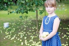 Χαριτωμένο κορίτσι στα μήλα εκμετάλλευσης φορεμάτων Στοκ Εικόνα