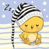 Χαριτωμένο κοτόπουλο ύπνου σε μια κουκούλα ελεύθερη απεικόνιση δικαιώματος