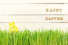 Χαριτωμένο λαγουδάκι Πάσχας στην πράσινη φρέσκια χώρα αυγό Πάσχας κίτρινο Στοκ εικόνες με δικαίωμα ελεύθερης χρήσης