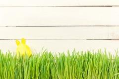 Χαριτωμένο λαγουδάκι Πάσχας στην πράσινη φρέσκια χώρα αυγό Πάσχας κίτρινο Στοκ Φωτογραφίες