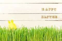 Χαριτωμένο λαγουδάκι Πάσχας στην πράσινη φρέσκια χώρα αυγό Πάσχας κίτρινο Στοκ Εικόνα