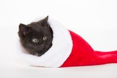 Χαριτωμένο μαύρο γατάκι στη γυναικεία κάλτσα Χριστουγέννων στοκ εικόνες