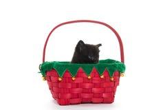 Χαριτωμένο μαύρο γατάκι στο καλάθι Στοκ φωτογραφία με δικαίωμα ελεύθερης χρήσης