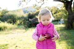 Χαριτωμένο μικρό κορίτσι έξω στη φύση μια ηλιόλουστη ημέρα Στοκ εικόνες με δικαίωμα ελεύθερης χρήσης