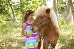 Χαριτωμένο μικρό κορίτσι που δίνει στο πόνι της ένα καρότο Στοκ Εικόνα